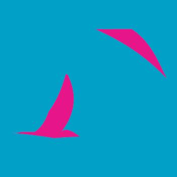 Blue_Pink_Lines-01